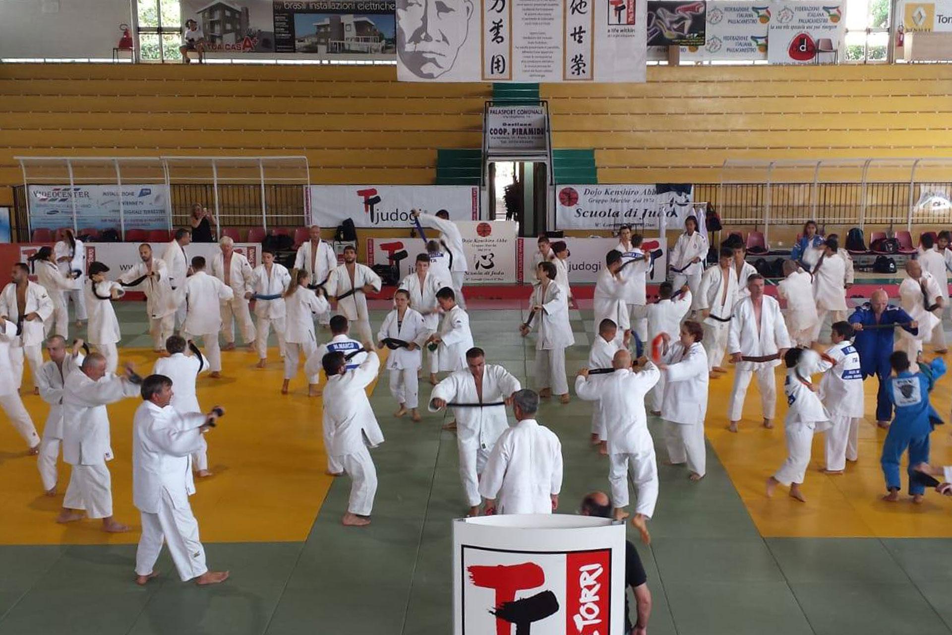 Video: E' iniziato l'11° Tre Torri Judo Summer Camp
